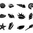 Seashells set. Vector — Stock Vector