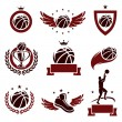 Basketball labels and icons set. Vector — Stock Vector #33358251