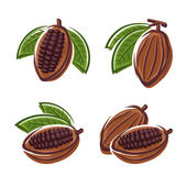 Cacao beans set — Stock Vector