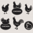 Chicken set — Stock Vector