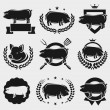 Pig labels and elements set — Stock Vector