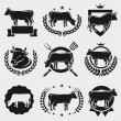 Cow labels and elements set — Stock Vector #44605455