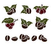 Coffee beans set — Stock Vector