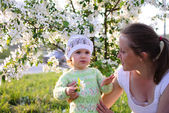 Mum with the child in flowers of an apple-tree — Stock Photo