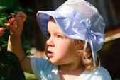 The child eats berries in a garden — Stock Photo