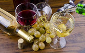 Wines an grapes — Stock Photo