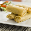 Spring roll — Stock Photo