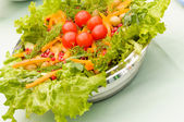 Salad of fresh greens — Stock Photo