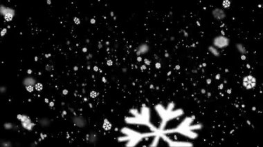 Snow Flakes Background — Stock Video