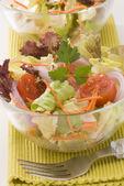 新鮮な夏のサラダ. — ストック写真