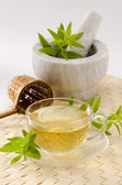 Lemon verbena herbal tea — Stock Photo