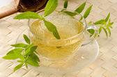 Lemon verbena herbal tea — Stock Photo