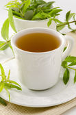 Lemon verbena herbal tea — Stok fotoğraf