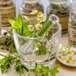 Stock Photo: Herbal Medicine.