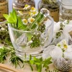 Herbal Medicine. — Stock Photo