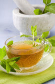 Mint Herbal Tea — Stock Photo