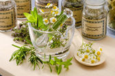 Herbal Medicine. — Stock Photo