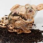 Frog — Stock Photo #36107559