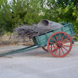 Old green cart — Stock Photo