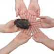 Blackbird on hands together-vertical — Stock Photo #28996243
