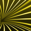 Photo: Abstract line yellow background