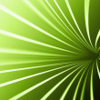 Abstract line green background — Stock Photo