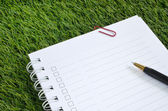 Notebook and pen on artificial grass — Stock Photo