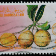 BRUNEI DARUSSALAM Postage Stamp (1987) — Stock Photo #42068777