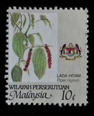 MALAYSIA postage stamp — Stock Photo