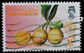 BRUNEI DARUSSALAM Postage Stamp (1987) — Stok fotoğraf