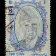 Pakistan postage stamp — Stock Photo