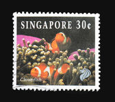 Singapore postzegel, anemoonvis — Stockfoto