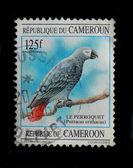 Cameroon postage stamp, circa 1995 — Стоковое фото