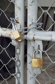 Mosiężne kłódki i metalowe drzwi — Zdjęcie stockowe