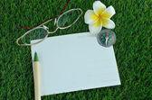 Postcard, pen, glasses, compass and frangipani on grass — Stock Photo