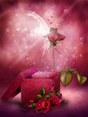 Pink roses and a box — Stock Photo