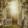 Old garden gate with ivy — Stock Photo #12671669