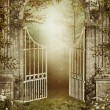 Old garden gate with ivy - Stock Photo