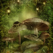 Enchanted forest with mushrooms — Stock Photo