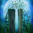 Fairytale door — Stock Photo