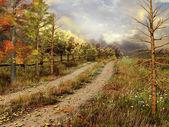 在秋季森林乡村道路 — 图库照片
