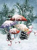 冬のキノコ — ストック写真