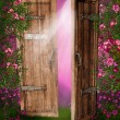 Enchanted door - Stock Photo
