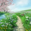 Stock Photo: Meadow path