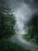 Rainy landscape — Fotografia Stock