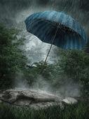 傘梅雨風景 — ストック写真