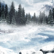 Stockfoto: Frozen lake