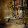 Stock Photo: Old house in forest