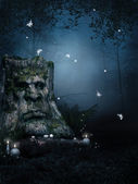Old tree in enchanted forest — Stock Photo
