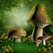 Stock Photo: Forest glade with mushrooms